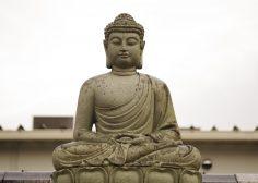 Ravi Shankar's Mass Meditation for World Peace: 70,000 gather at World Culture Festival